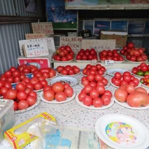 美瑛 無人野菜販売所「サスケの家」さんで。
