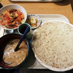 【新橋】天茶屋 七蔵 一生に一度は食べたい稲庭うどん