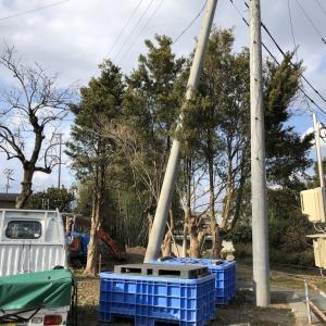 木枝伐採と工具入れ設置と造成
