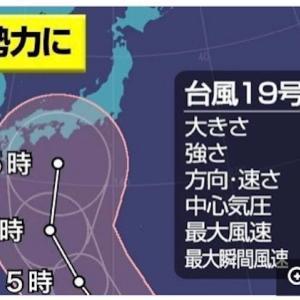 大型台風19号「猛烈な」勢力に 三連休に日本に接近へ