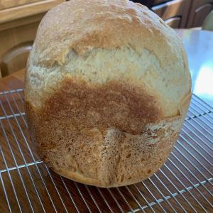 ホシノ酵母で全粒粉とライ麦のパン