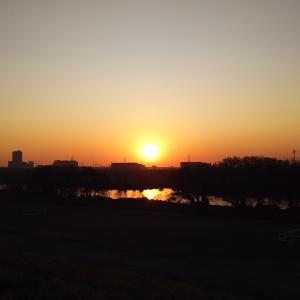 (動画あり)江戸川サイクリングロードのポニーランドと流山橋往復のサイクリング