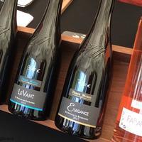 【ロワール ワイン&ビール】ビールも酒造するワイナリー   エルヴェ・モラン Hervé Morin 氏