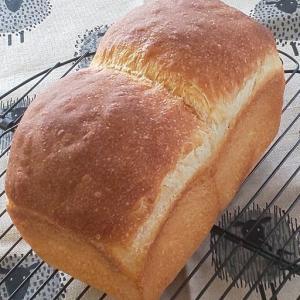 《これから天然酵母を始める方へ》食パン型、1斤ってみんな同じ???
