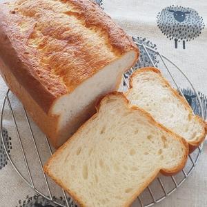《これから天然酵母を始める方へ》食パンの成形、2つの山やワンローフなど、いろいろあるのはなぜ?