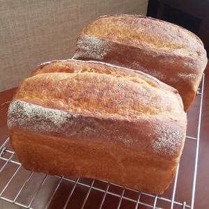 【動画レッスンメニューのご紹介】おうちで食パンが焼ける!パンの基本もしっかりと詰まっています。