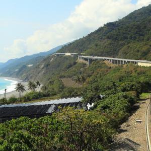 南廻線 台湾の非電化幹線