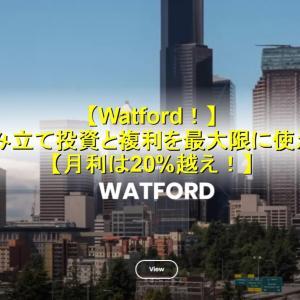 Watford! 積み立て投資と複利を最大限に使え! 月利は20%越え!