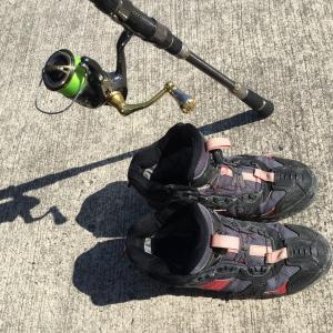 耐久性◎シマノ・ラバーピンフェルトシューズが優秀過ぎる。ショアジギングにもオススメな磯靴。