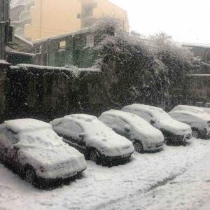 雪雪雪オブ雪