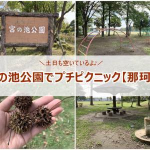 とても空いてて、遊具も充実している那珂市にある穴場な公園。宮の池公園で遊んだ感想ブログ