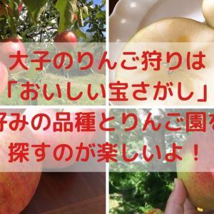 大子のりんご狩りは「おいしい宝さがし」好みの品種とりんご園を探すのが楽しいよ!