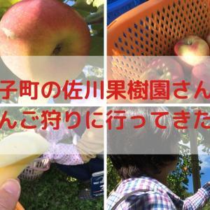 大子町の佐川果樹園さんにりんご狩りに行ってきたよ