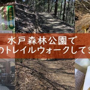 水戸市森林公園で手軽に山登り!成沢トレイルコースが人気ですよ トレイルラン
