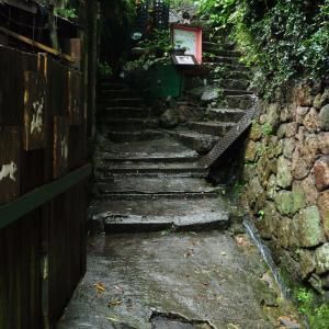 今注目の広島尾道の『猫の細道』についてTwitterまとめてみた