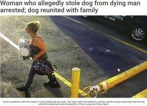 【悲劇】散歩中の飼い主が発作!そのちょっとした隙に、犬を盗んだ女を逮捕(@_@;)