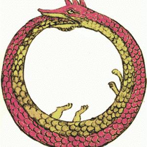 【動画あり】何で!餌と間違えて自分の尾を飲み込んだ・・輪っかになったヘビの救出劇