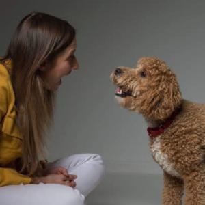 【感動】難病を抱えた女性と介助犬 二人三脚で親切の輪を広げる