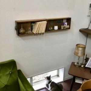 ニベアで、家具のケア。