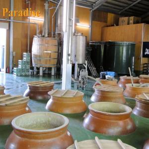南九州の焼酎の作り方=実際に観るのもいいですよ
