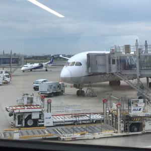 静かなる大阪国際空港
