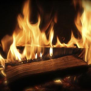 焚き火で癒される。ASRMとは?
