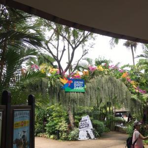シンガポールのバードパーク