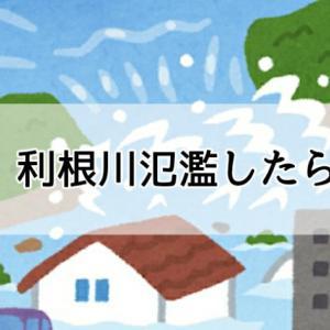 印西市|利根川が氾濫したらどうなる?ハザードマップで確認できるよ!自分の家は浸水するか確かめよう!