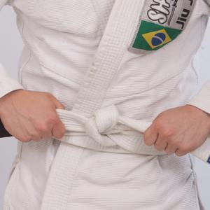 【ブラジリアン柔術】青帯まで後一歩の方へ