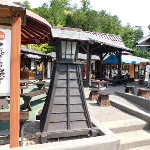 小國神社の菖蒲