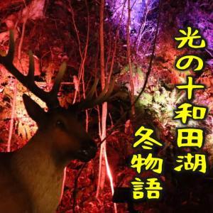 【十和田神社】夜の湖畔で楽しむ幻想の物語|青森県十和田市