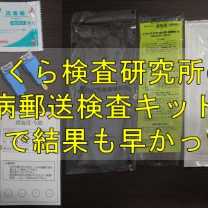 【郵送検査】性病検査キットで費用も安く、こっそり済んだ!