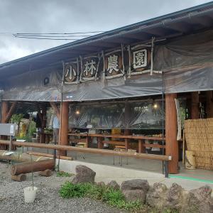 焼きとうもろこし/焼きとうもろこしのお店 小林農園@長野県上水内郡