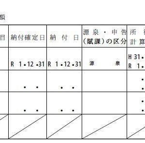 2019年の米国株配当は『31万円』!外国税額控除の還付額は・・・