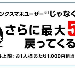 【日曜日限定!】Yahooショッピングで最大ポイント5倍還元!