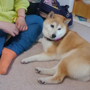 北海道1泊2日の旅のKaoriさん マジか~!