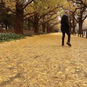 或る秋の日 佐野元春