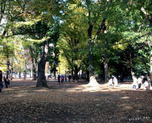 上野公園の美術館や文化施設内にあるレストランやカフェの一覧! 美術館・ギャラリー巡り【上野公園・谷根千】− その1