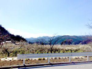 越生梅林へのお花見とともに、関東を一望できる穴場スポットに立ち寄る 春を感じるハイキングコースを紹介します