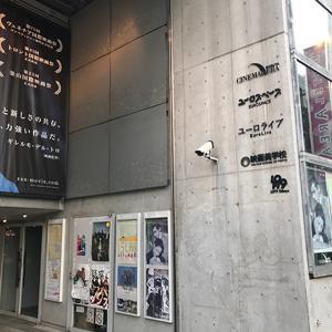 スマートな渋谷を楽しみ方と、おすすめランチスポットの紹介!奥渋エリアを歩く【渋谷】