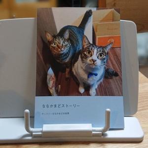 猫のフォトブック、作ってみました。
