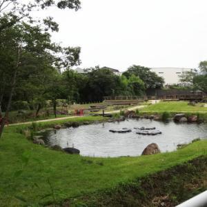 清水町・丸池公園 拡張エリアがもうすぐオープン♪