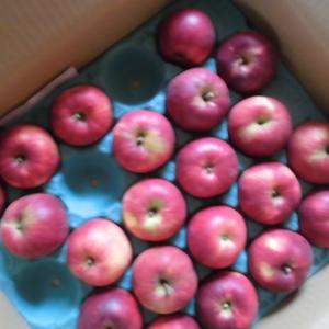 初めて『焼きりんご』を作りました。ダイソーのコレが便利!