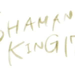 SHAMAN KING(シャーマンキング)第17廻「天使のピストル」感想