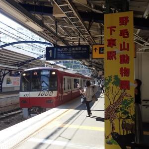 やっぱり横須賀が落ち着きます