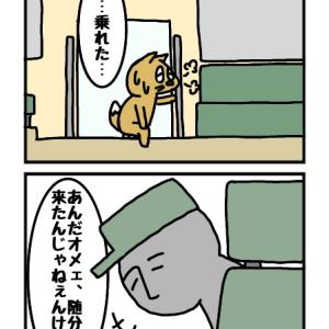 大人の全力走 3