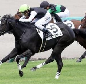 2歳牝馬頂上決戦!!第71回 阪神ジュベナイルフィリーズの展望
