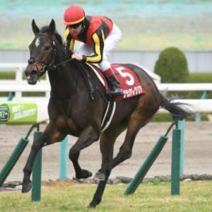 東京マイル王者決定戦!荒れるに荒れる安田記念の展望