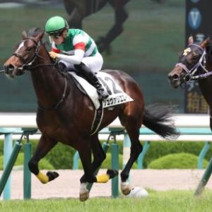 以後G1で活躍した馬も多数輩出!新潟2歳Sの展望