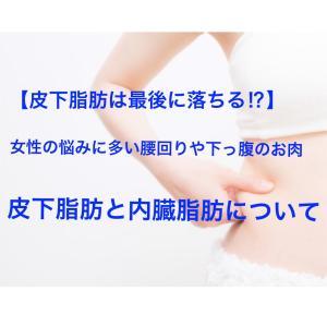 【皮下脂肪は最後に落ちる!?】女性の悩みに多い腰周りや下っ腹お肉 皮下脂肪と内臓脂肪について